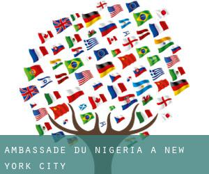 Ambassade du Nigeria à New York City